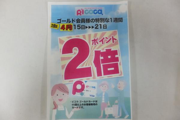 DSCF2437.JPG